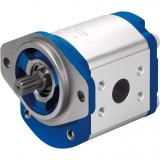 Original Rexroth AZPF series Gear Pump R919000404	AZPFFF-22-028/028/028LRR202020KB-S9996